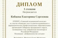 Диплом Кобцева Екатерина