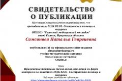 Самсонова Наталья Георгиевна