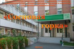ОГБУСО «Реабилитационный центр для детей и подростков с ограниченными возможностями «Сосновая горка»